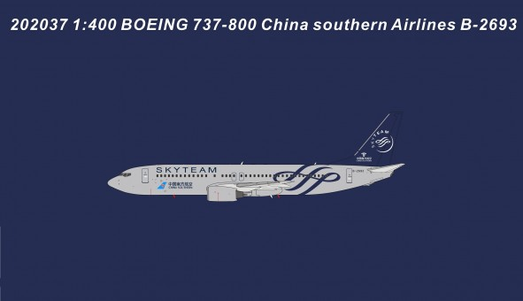 China Southern Boeing 737-800 Skyteam livery B-2693 die-cast Panda 202037 scale 1:400