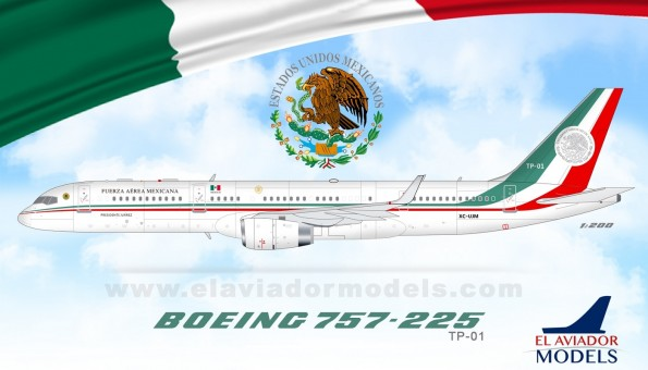 Fuerza Aerea Mexicana Boeing 757-225 old presidential transport  TP-01 InFlight EAVTP01 scale 1:200
