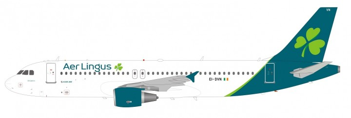 Aer Lingus Airbus A320-200 EI-DVN with stand InFlight IF320EI0319 sclae 1:200