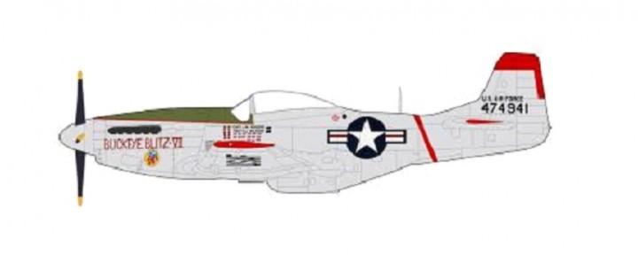 "P-51 D Mustang USAF  ""Buckeye blitz VI"" Capt J.W. Rogers 36th FBS 8th FBW HA7736 Scale 1:48"