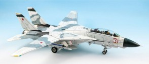 USN Red 31 Tomcatsky, NSAWC Naval Air Station  Tomcat F-14A  Die-Cast CA721407 Scale 1:72
