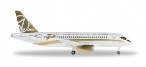 Center South Airlines Sukhoi Superjet 100 Reg# RA-89007 75th Sukhoi's Anniversary Herpa Wings 529310 Scale 1:500