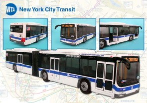 Metropolitan Transit Authority (MTA) New York City Transit Articulated Bus RT8563