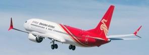 Shenzhen Airlines Boeing 737 Max-8 B-1146 深圳航空 Antenna JC JC4CSZ064 scale 1:400